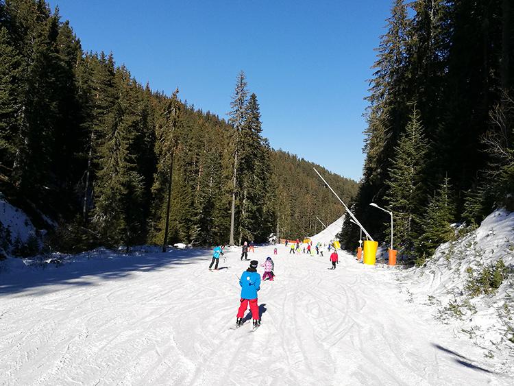 The Ski Road