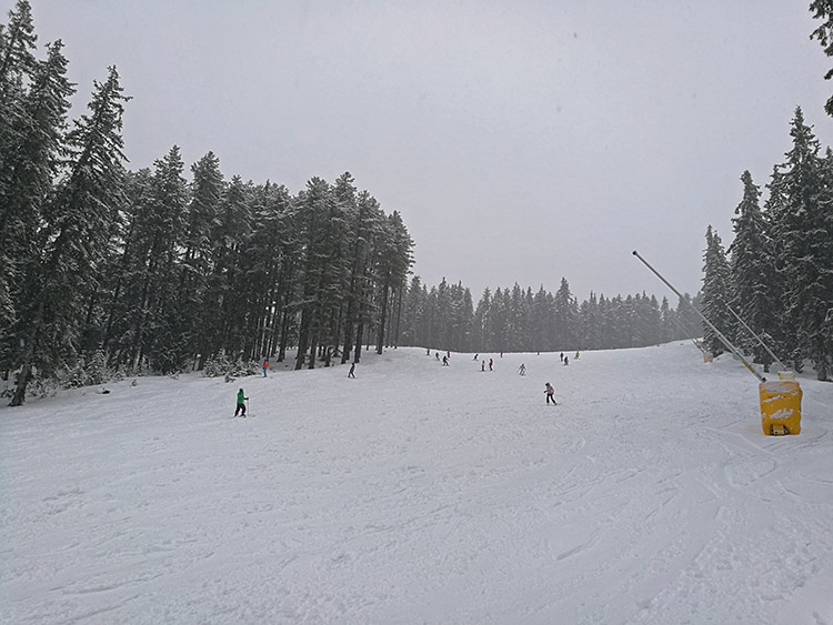 The N.10 Shiligarnik ski run.