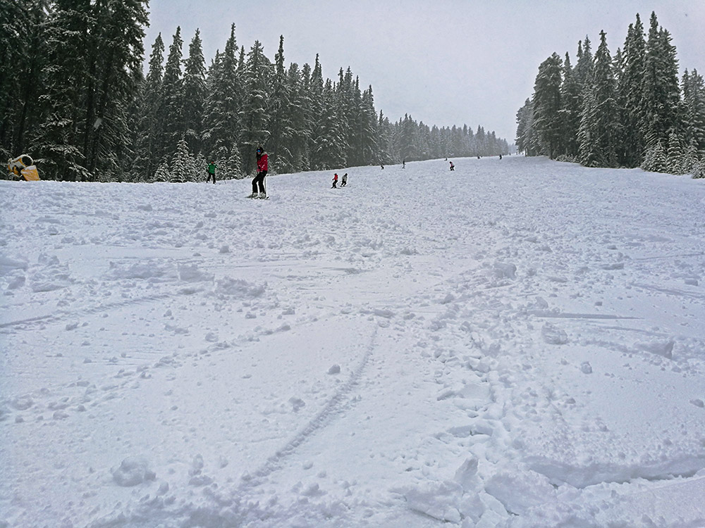 The Balkaniada ski run. Notice the soft snow.