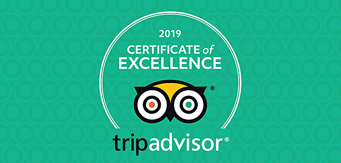 certificate of excellence by tripadvisor for ski & board traventuria